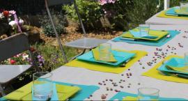Obiad Sąsiedzki na Obozisku