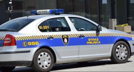 Pracowity maj strażników miejskich