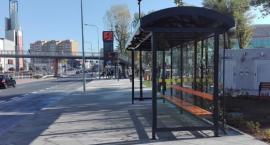 Stałe zmiany przystankowe przy ulicy Struga