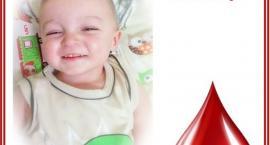 Zbiórka krwi dla 3-letniego Nikodema
