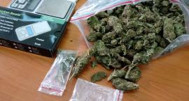 Policjanci zabezpieczyli 200 gramów marihuany
