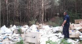 Dzielnicowy ustalił, kto zniszczył las, robiąc tam wysypisko śmieci