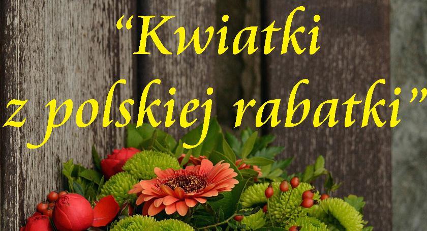 Koncerty, Kwiatki polskiej rabatki - zdjęcie, fotografia