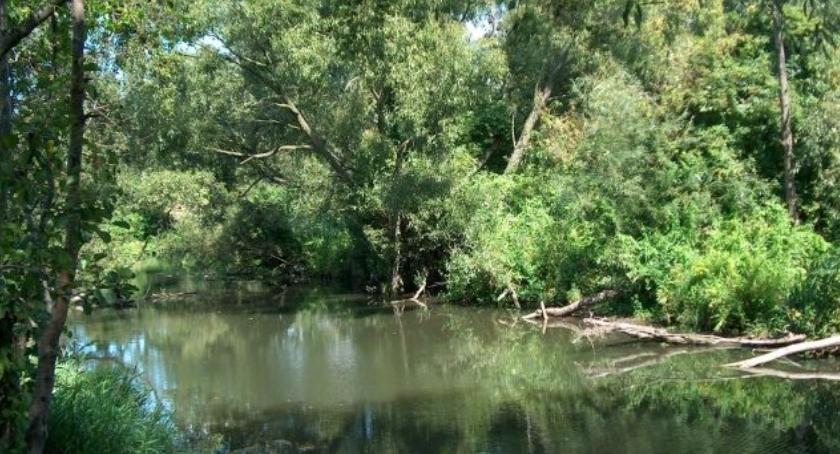 Sprawy lokalne, Ostrzeżenie hydrologiczne - zdjęcie, fotografia