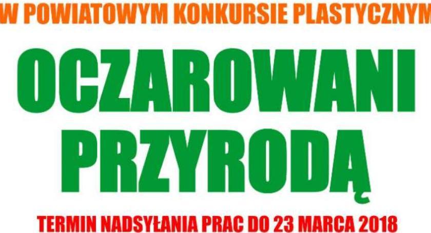 Konkurs, edycja Powiatowego Konkursu Plastycznego - zdjęcie, fotografia