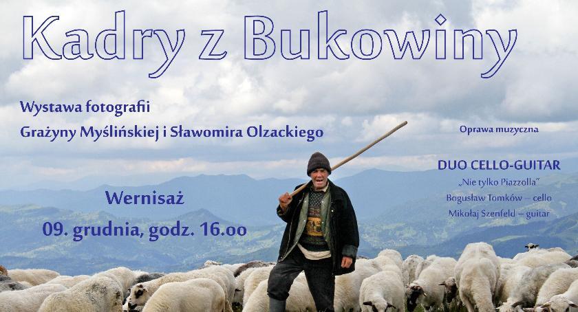 Wystawy, Kadry Bukowiny - zdjęcie, fotografia