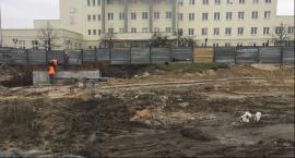 Skwer Kisiela w połowie marca