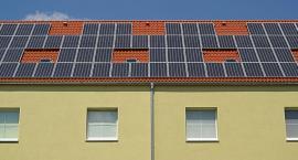 Panele słoneczne - czy warto się na nie zdecydować?