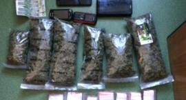 Zatrzymany za uprawę konopi i posiadanie marihuany