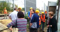 Bez zezwolenia burmistrza wycięto dwa drzewa na stacji w Piastowie