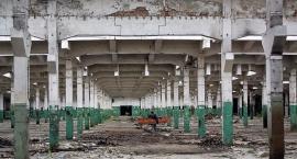 Dawna fabryka traktorów: tutaj powstają nowoczesne osiedla mieszkaniowe, a co ze starymi halami?