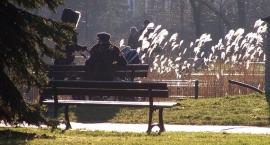 Park Czechowicki przebija wszystkie propozycje spacerów na weekend