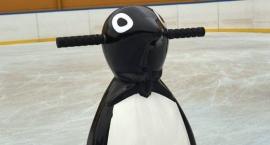 Pingwin z lodowiska przy Szkole Podstawowej nr 11 czeka na imię dla siebie. Może Lolek?
