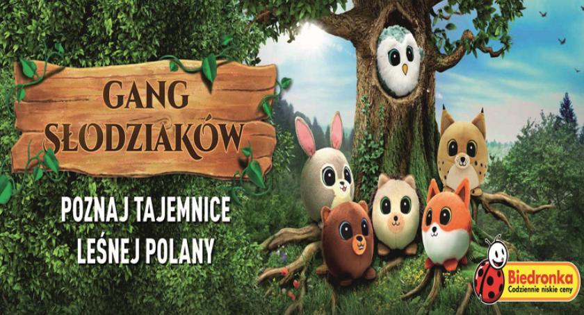 rozrywka, Ponad milionów Słodziaków cieszy klientów Biedronki - zdjęcie, fotografia
