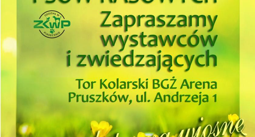 wystawy, Wystawa psów Pruszków marca - zdjęcie, fotografia