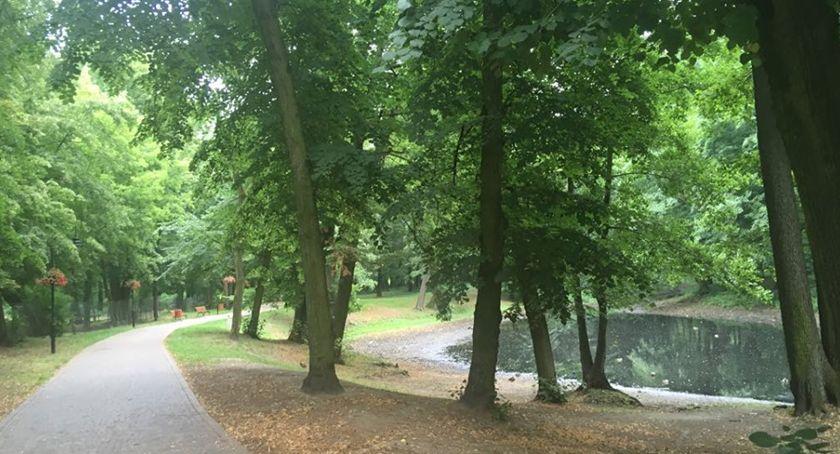 inwestycje, Kolejny rewitalizacji parku miejskiego Brwinowie - zdjęcie, fotografia