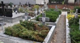Pamięć o wojennej historii - kwatery żołnierskie na brwinowskim cmentarzu wyremontowane