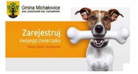 Bezpłatne znakowanie/chipowanie psów