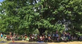 Piknik Zielono mi w Komorowie