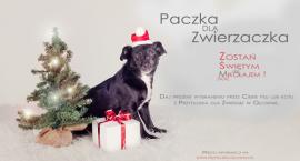 """Świąteczna Akcja  """"Paczka dla zwierzaczka"""" - weź udziała nie tylko wirtualnie!"""