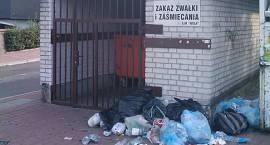 Co dalej z reformą śmieciową?