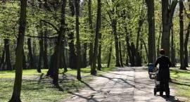 Rewitalizacja parku w Brwinowie