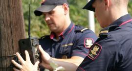 W Sochaczewie 45-latek rozkręcał tory – wpadł dzięki foto-pułapce