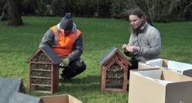 Zagroda z pszczołami murarkami w brwinowskim dworku ZAGRODA
