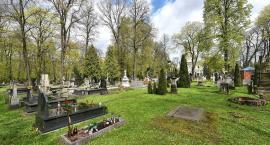 (Nie)zapomniane cmentarze. Połóżmy gałązkę jedliny na opuszczonym grobie