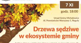 Drzewa sędziwe w ekosystemie gminy Komorów