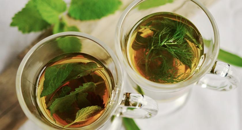 Blogi, Rodzaje herbat właściwości zdrowotne - zdjęcie, fotografia