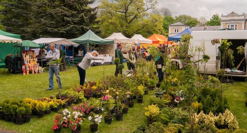 Lokalny biznes, wiosenny jarmark tylko Ciechanowca - zdjęcie, fotografia
