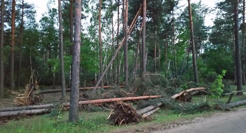 Wiadomości, Tragiczne skutkach burze przeszły Polską zabici ranni - zdjęcie, fotografia