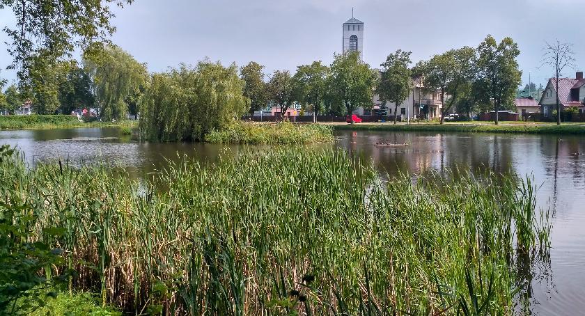 Wiadomości, Urzędnicy muszą odpowiedzialni rozumne kształtowanie miasta - zdjęcie, fotografia