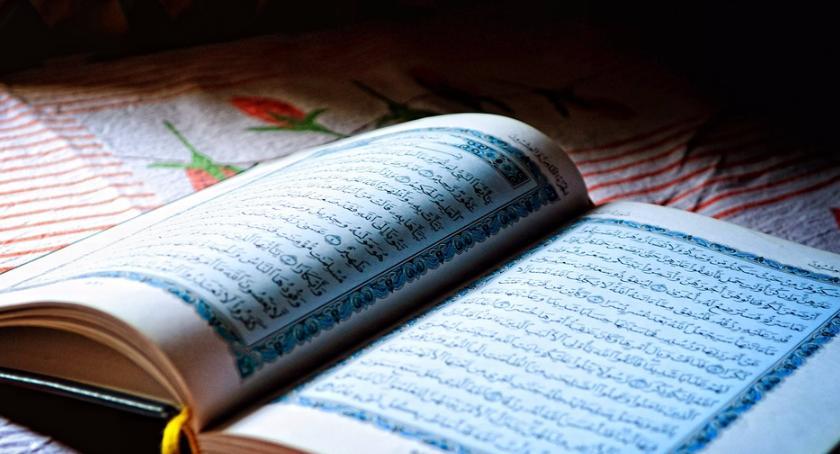 Blogi, Lecą Wióry Leśny Koran powszedni - zdjęcie, fotografia