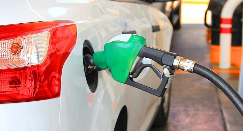 Motoryzacja, paliw przestały rosnąć - zdjęcie, fotografia