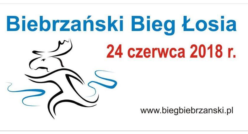 Sport, Miłośnicy biegania jazda Parku… Biebrzańskiego! - zdjęcie, fotografia