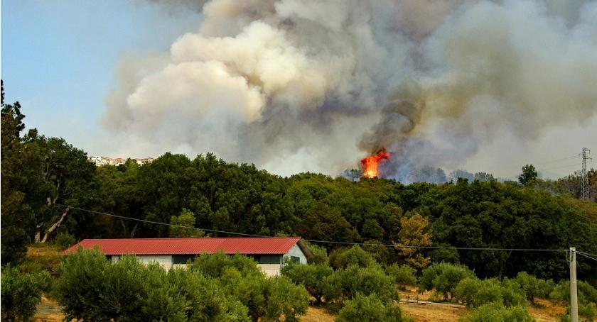 Blogi, Lecą wióry Pewna płonąca stodoła… - zdjęcie, fotografia