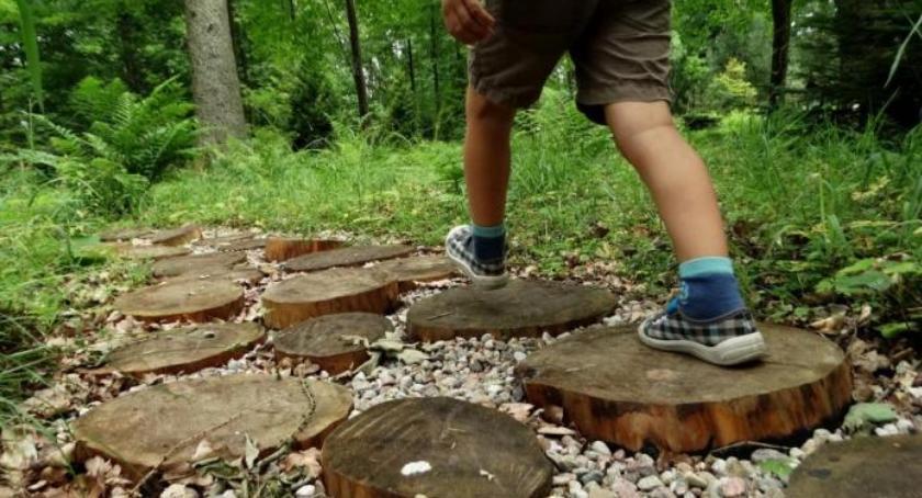 Styl życia, Wakacyjne wycieczki lesie zasad bezpieczeństwa - zdjęcie, fotografia