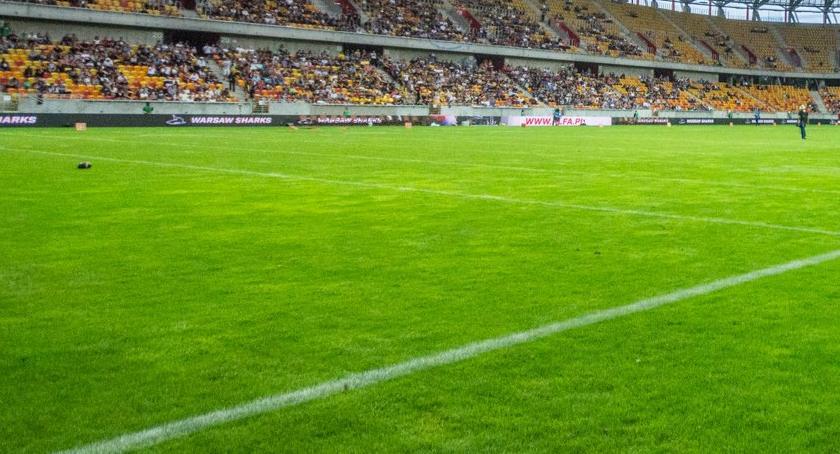 Wiadomości, trawa Stadionie Miejskim zdąży zazielenić przed meczem - zdjęcie, fotografia