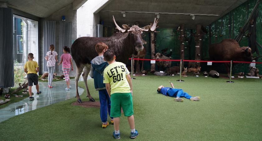 Wiadomości, końca wakacji czynne będzie Uniwersyteckie Centrum Przyrodnicze - zdjęcie, fotografia