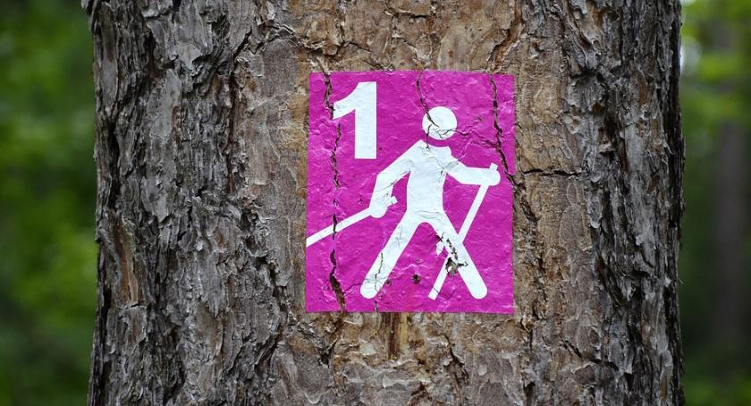 Sport, Wtorkowe popołudnie nordic walking - zdjęcie, fotografia