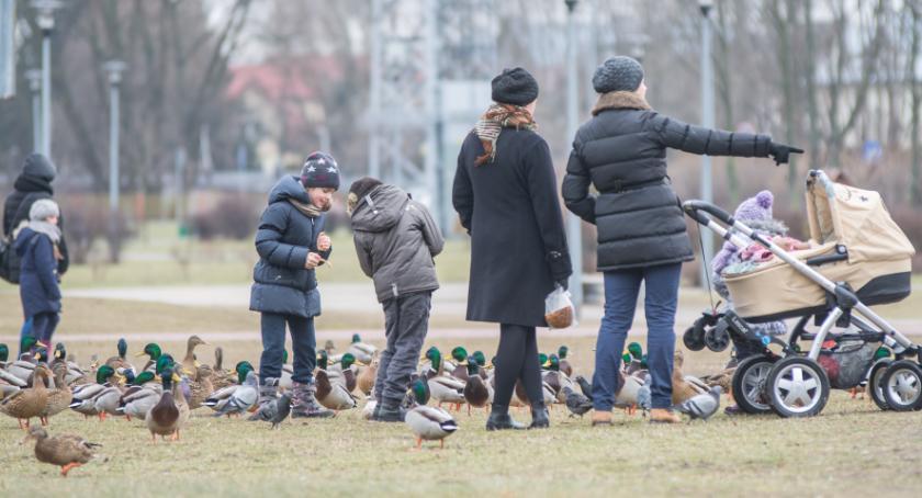 Wiadomości, Mieszkańcom Podlasia podoba mieszkanie Podlasiu - zdjęcie, fotografia