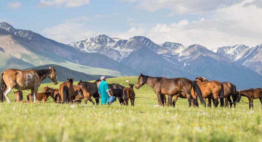 Kultura, Podróże przez Mongolię Kirgistan - zdjęcie, fotografia