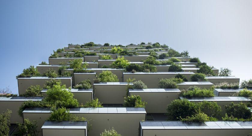 Nieruchomości, Wiosenne odnowienie balkonu - zdjęcie, fotografia