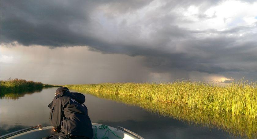 Blogi, Lecą Wióry Gorszy ekolog - zdjęcie, fotografia
