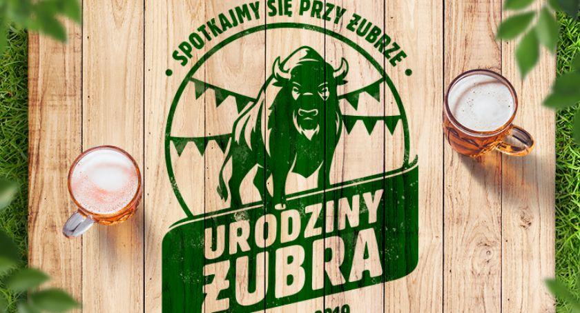 Wiadomości, Białystok będzie kolejny obchodził urodziny Żubra - zdjęcie, fotografia