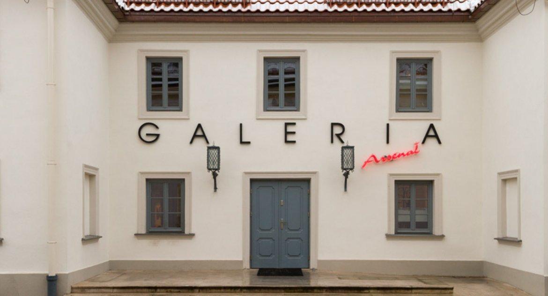 Kultura, Gównoburza Galerię Arsenał burzy żadnej - zdjęcie, fotografia
