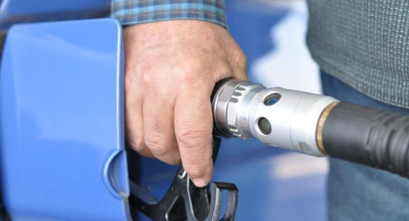 Motoryzacja, takich paliw powinniśmy przyzwyczaić - zdjęcie, fotografia