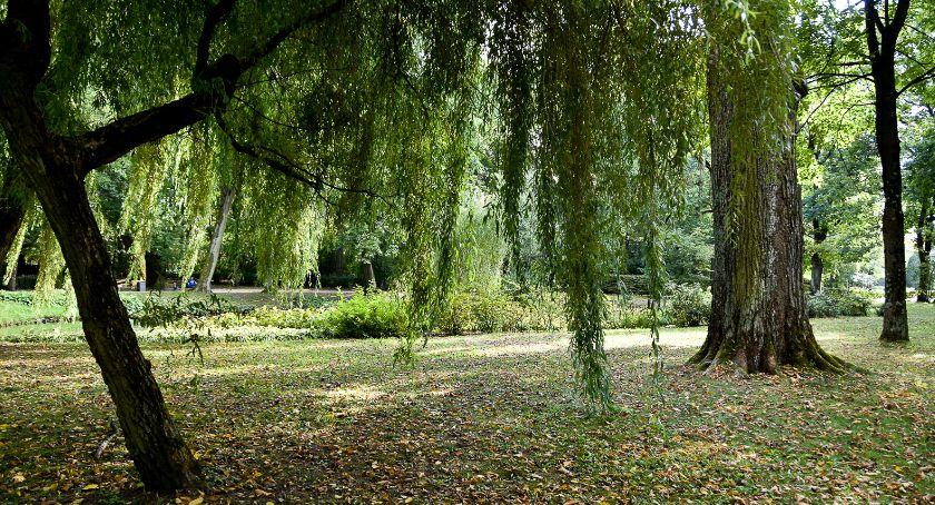 Wiadomości, rozpocząć rewitalizacja białostockich parków - zdjęcie, fotografia